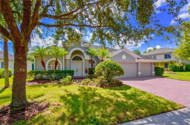5031 Devon Park Drive, Tampa, FL 33647 (MLS #T3131141) :: Remax Alliance