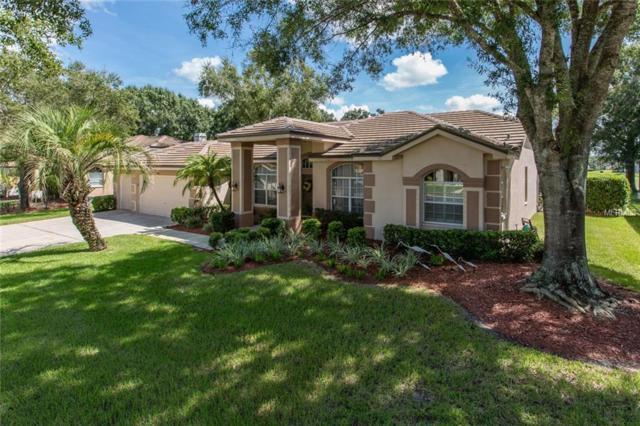 1101 Kings Way Lane, Tarpon Springs, FL 34688 (MLS #T3131203) :: Beach Island Group