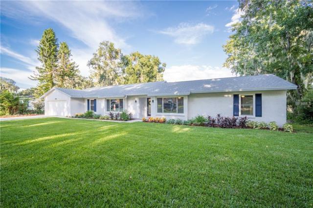 14813 N Rome Avenue, Tampa, FL 33613 (MLS #T3131226) :: Dalton Wade Real Estate Group