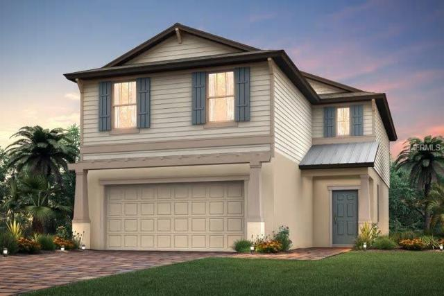 3106 Oliver Creek Drive, Odessa, FL 33556 (MLS #T3131249) :: Griffin Group