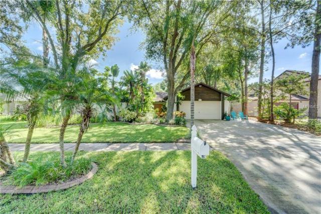 3213 Taragrove Drive, Tampa, FL 33618 (MLS #T3131250) :: Remax Alliance