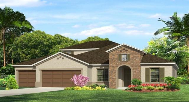 4366 Frontera Lane, Wesley Chapel, FL 33543 (MLS #T3131261) :: Team Bohannon Keller Williams, Tampa Properties