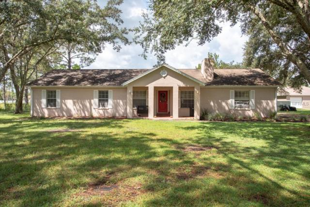 7427 Drifting Sand Drive, Wesley Chapel, FL 33544 (MLS #T3131307) :: The Duncan Duo Team
