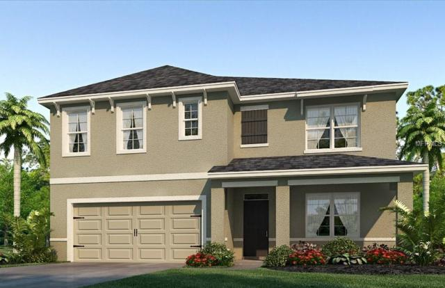 9515 Warm Stone Street, Thonotosassa, FL 33592 (MLS #T3131319) :: G World Properties