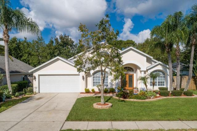 4730 Stoneview Circle, Oldsmar, FL 34677 (MLS #T3131332) :: O'Connor Homes