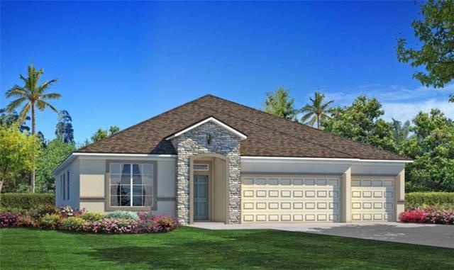 5073 Ivory Stone Drive, Wimauma, FL 33598 (MLS #T3131384) :: Team Suzy Kolaz
