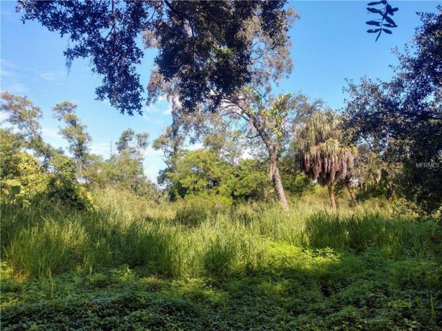 7300 S Swoope Street, Tampa, FL 33616 (MLS #T3131438) :: Dalton Wade Real Estate Group