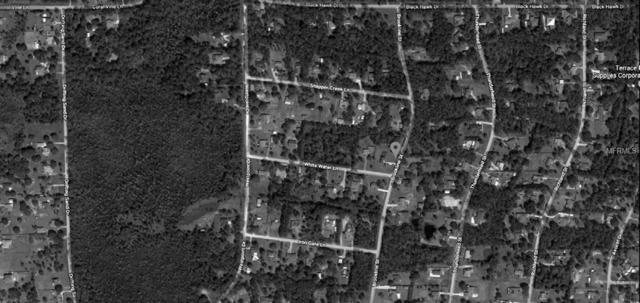 0 Brookline St     Lot 296, Wesley Chapel, FL 33544 (MLS #T3131582) :: The Duncan Duo Team