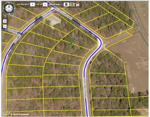 Honeycreeper Road, Weeki Wachee, FL 34614 (MLS #T3131685) :: KELLER WILLIAMS CLASSIC VI