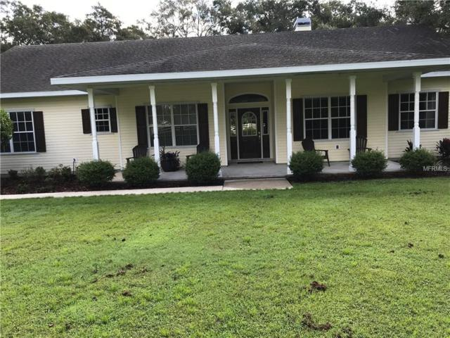 3418 Tindle Road, Plant City, FL 33565 (MLS #T3131686) :: Gate Arty & the Group - Keller Williams Realty