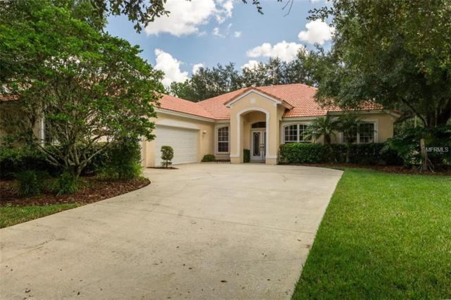 18111 Courtney Breeze Drive, Tampa, FL 33647 (MLS #T3131757) :: Cartwright Realty