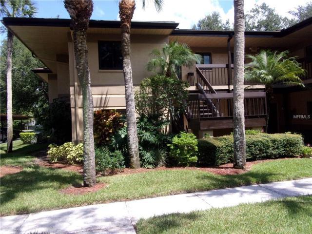 2667 Sabal Springs Circle #101, Clearwater, FL 33761 (MLS #T3131769) :: Lock and Key Team