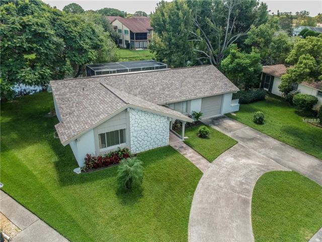 3900 Edgemont Drive, New Port Richey, FL 34652 (MLS #T3131772) :: Lock and Key Team