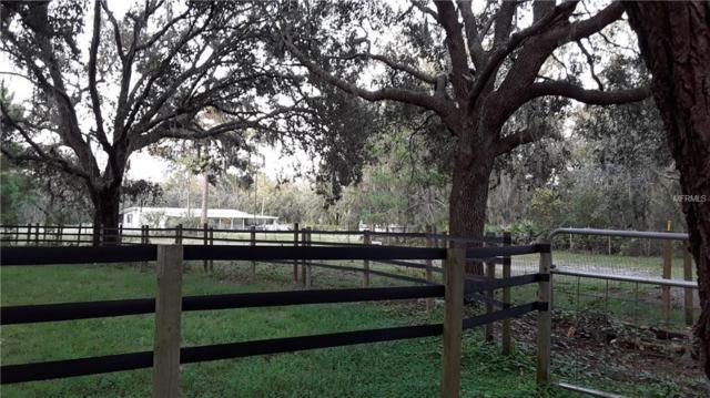 12608 Hayes Clan Road, Riverview, FL 33579 (MLS #T3131782) :: Lovitch Realty Group, LLC