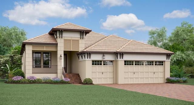 3111 Christophers Watch Lane, Ruskin, FL 33570 (MLS #T3131796) :: Dalton Wade Real Estate Group
