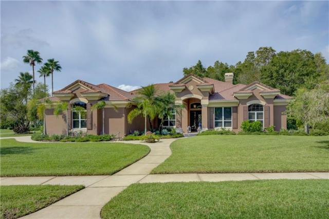 11902 Marblehead Drive, Tampa, FL 33626 (MLS #T3131804) :: Griffin Group