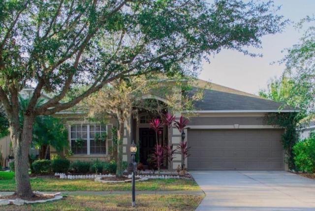 10493 Lucaya Drive, Tampa, FL 33647 (MLS #T3131806) :: Cartwright Realty