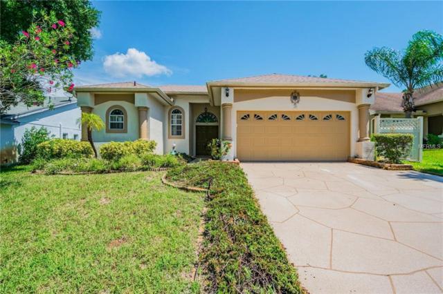 759 Wildflower Drive, Palm Harbor, FL 34683 (MLS #T3131825) :: Jeff Borham & Associates at Keller Williams Realty