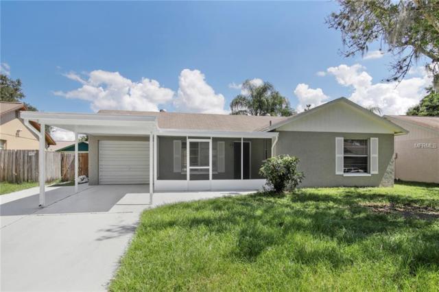 3648 Mccloud Street, New Port Richey, FL 34655 (MLS #T3131869) :: Lock and Key Team