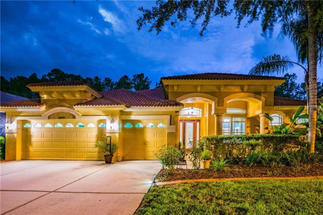 10232 Arbor Side Drive, Tampa, FL 33647 (MLS #T3131886) :: Cartwright Realty