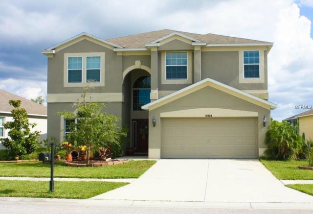 18904 Narimore Drive, Land O Lakes, FL 34638 (MLS #T3131956) :: Team Bohannon Keller Williams, Tampa Properties