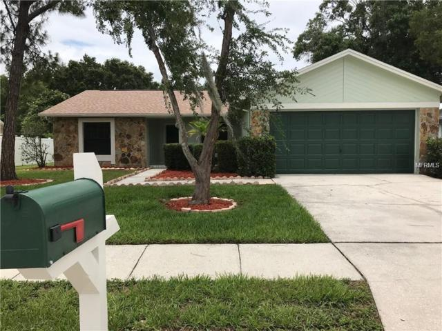 12618 Trucious Place, Tampa, FL 33625 (MLS #T3131968) :: O'Connor Homes