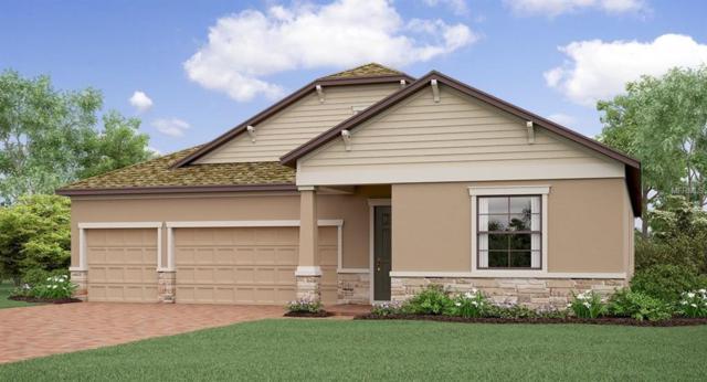 2898 Hilliard Drive, Wesley Chapel, FL 33543 (MLS #T3131974) :: Cartwright Realty