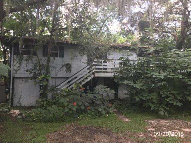 924 Edgehill Road, Valrico, FL 33594 (MLS #T3131989) :: Lovitch Realty Group, LLC