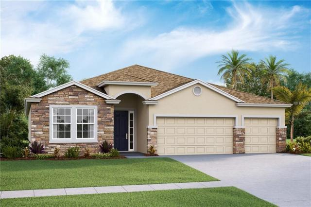 5824 Hevena Court, Palmetto, FL 34221 (MLS #T3131991) :: Medway Realty