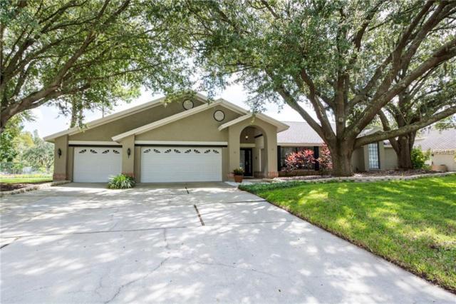 16211 Belle Meade Boulevard, Odessa, FL 33556 (MLS #T3132026) :: Griffin Group