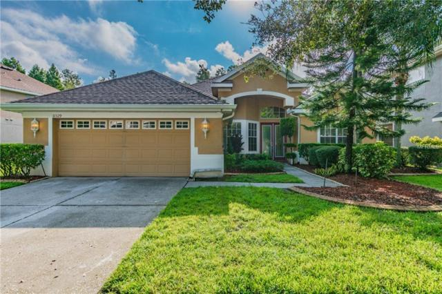 11329 Minaret Drive, Tampa, FL 33626 (MLS #T3132033) :: Gate Arty & the Group - Keller Williams Realty