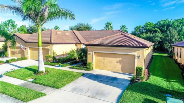 237 Shell Falls Drive, Apollo Beach, FL 33572 (MLS #T3132046) :: The Duncan Duo Team