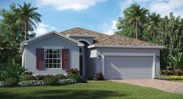 231 Preston Avenue, Davenport, FL 33837 (MLS #T3132078) :: Bustamante Real Estate
