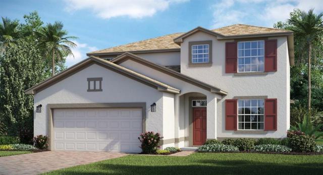 419 Brunswick Drive, Davenport, FL 33837 (MLS #T3132085) :: Bustamante Real Estate