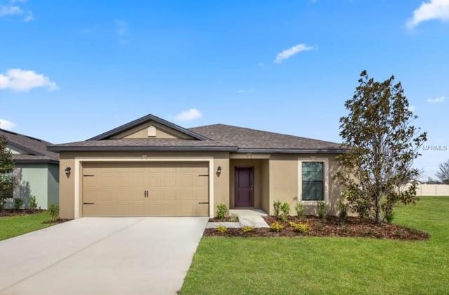 730 Chatham Walk Drive, Ruskin, FL 33570 (MLS #T3132087) :: Lovitch Realty Group, LLC