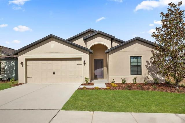 742 Chatham Walk Drive, Ruskin, FL 33570 (MLS #T3132113) :: Lovitch Realty Group, LLC