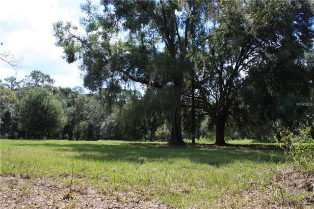 14205 N 301ST Highway, Thonotosassa, FL 33592 (MLS #T3132115) :: Lovitch Realty Group, LLC