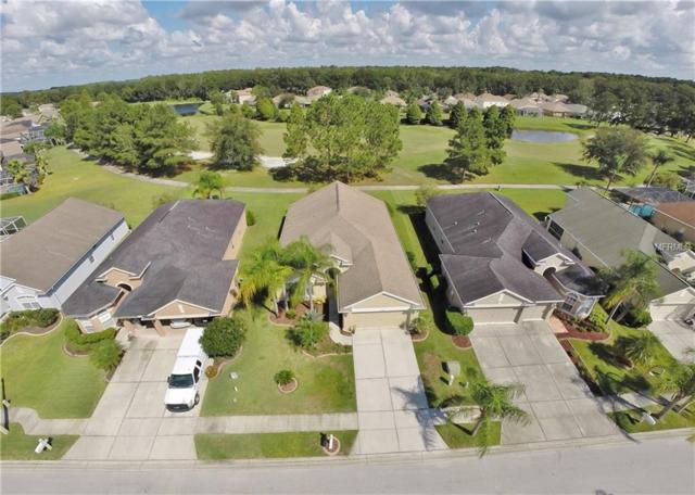 23831 Plantation Palms Boulevard, Land O Lakes, FL 34639 (MLS #T3132133) :: Delgado Home Team at Keller Williams