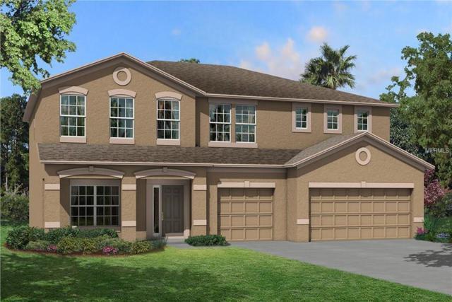 11419 Carlton Fields Drive, Riverview, FL 33579 (MLS #T3132142) :: Lovitch Realty Group, LLC