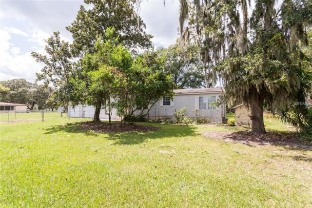 10709 5TH Street, Riverview, FL 33569 (MLS #T3132145) :: KELLER WILLIAMS CLASSIC VI