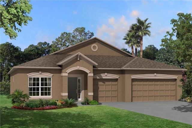 11423 Carlton Fields Drive, Riverview, FL 33579 (MLS #T3132151) :: KELLER WILLIAMS CLASSIC VI