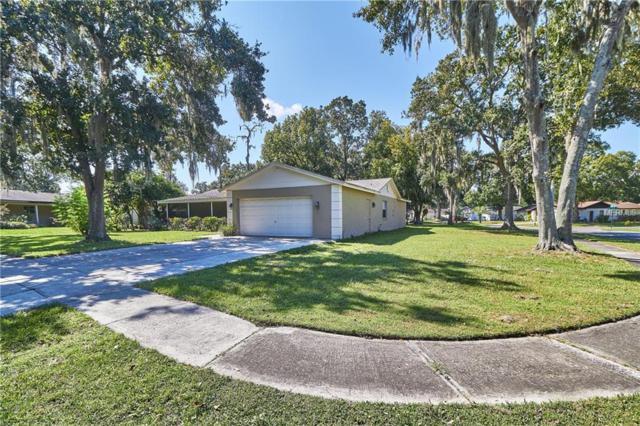 3814 Southview Drive, Brandon, FL 33511 (MLS #T3132184) :: KELLER WILLIAMS CLASSIC VI