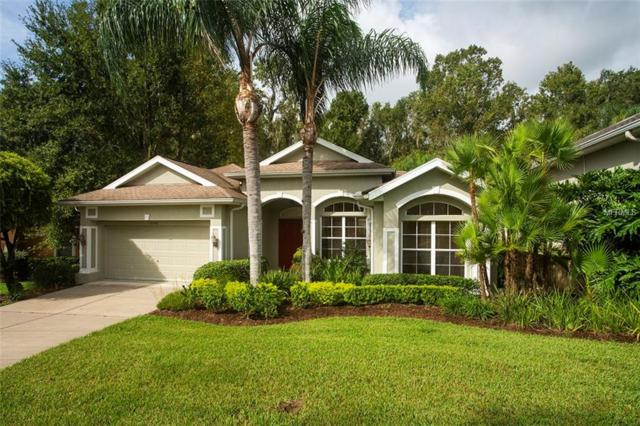 12240 Woodlands Circle, Dade City, FL 33525 (MLS #T3132201) :: Team Bohannon Keller Williams, Tampa Properties
