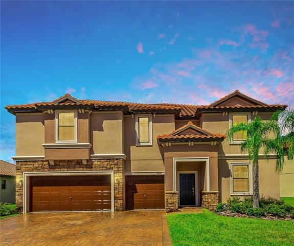 19001 Lutterworth Court, Land O Lakes, FL 34638 (MLS #T3132203) :: Cartwright Realty