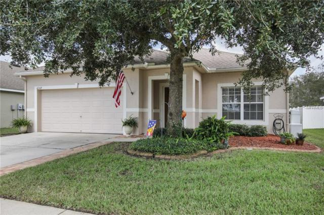 6307 Desert Peace Avenue, Land O Lakes, FL 34639 (MLS #T3132210) :: Cartwright Realty