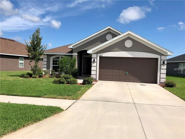 10850 Kirkwall Port Drive, Wimauma, FL 33598 (MLS #T3132253) :: The Light Team