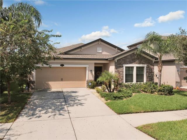 11416 Blue Crane Street, Riverview, FL 33569 (MLS #T3132264) :: KELLER WILLIAMS CLASSIC VI
