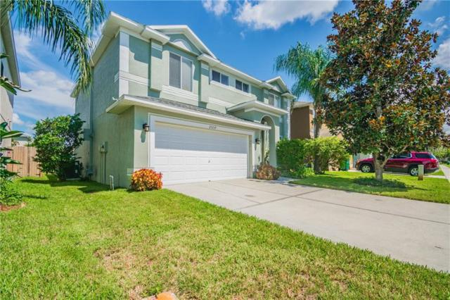 25719 Aldus Drive, Land O Lakes, FL 34639 (MLS #T3132287) :: Cartwright Realty