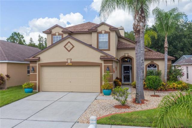 30649 Tremont Drive, Wesley Chapel, FL 33543 (MLS #T3132294) :: Delgado Home Team at Keller Williams