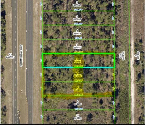 18378 Commercial Way, Weeki Wachee, FL 34614 (MLS #T3132307) :: KELLER WILLIAMS CLASSIC VI